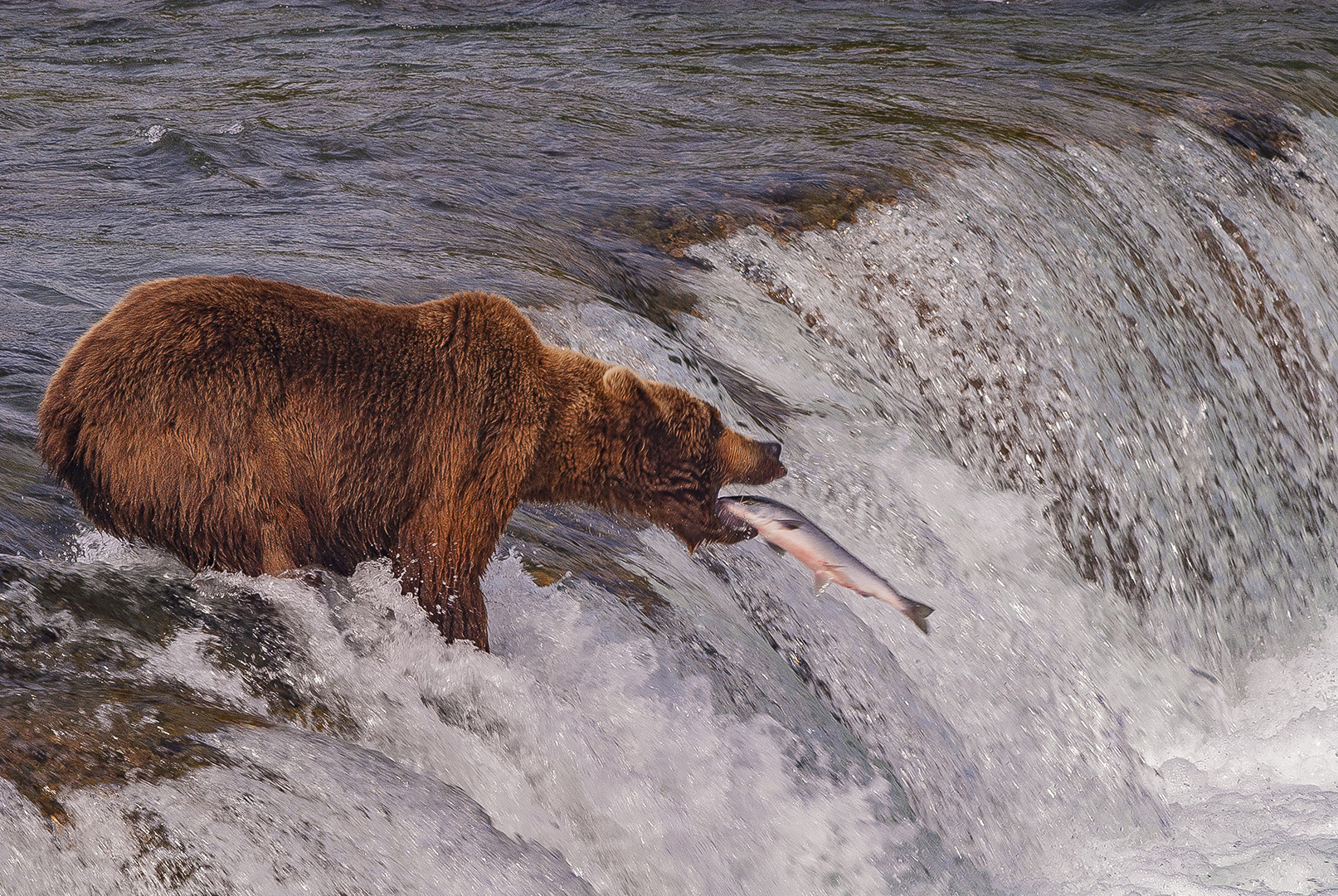 Lunch At The Falls by Ken Quigley