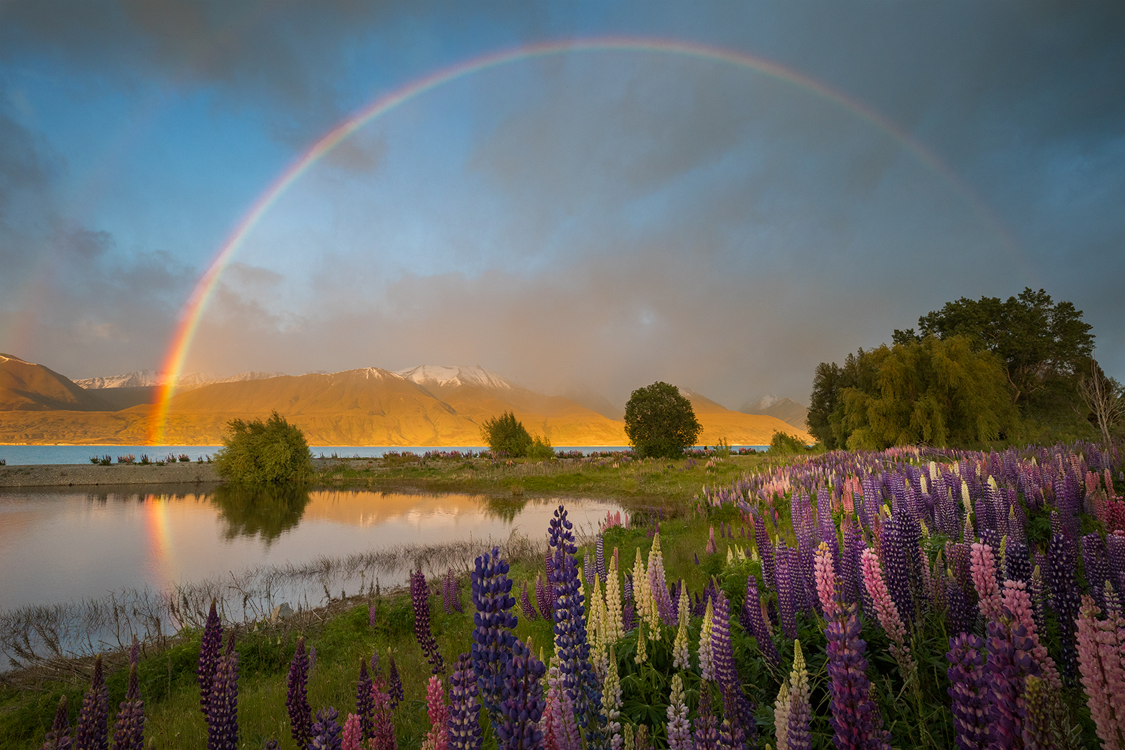 Mt Cook Park Rainbow By Drema Swader