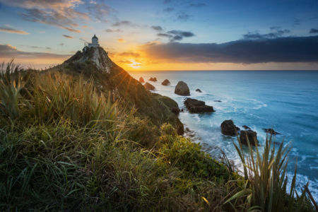 Nugget Point Lighthouse At Sunrise by Drema Swader