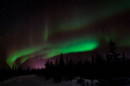Aurora Near Churchill, Canada by Lin Craft